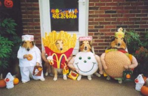 Dog costumes---Happy Meals