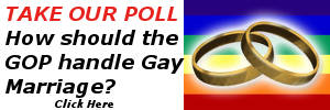 Take The Bull Elephant Poll