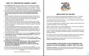 Ferguson Campaign Literature - Click to Enlarge