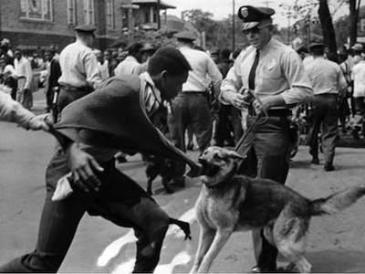 Birmingham Campaign Attack Dogs