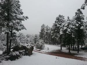 Mount Rushmore Snow