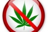Virginia Senate Committee Defeats Decriminalization of Marijuana