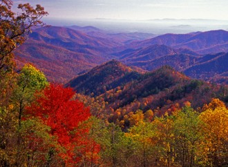 When Will the Foliage Color Peak in Virginia?