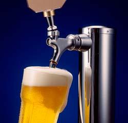 Draft Beer, Not Females