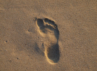 Our Moral Footprint